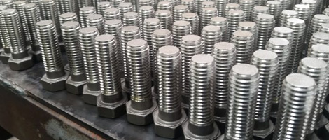 Stainless Steel 304L Bolt