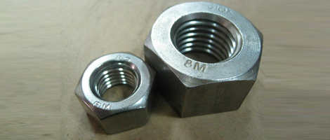Stainless Steel 317 Nuts