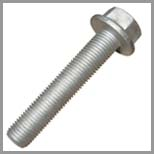 SS Hex Flange Bolts