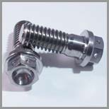 Stainless Steel Hex Flange Bolts