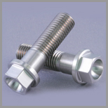 Stainless Steel Hexagon Flange Bolts