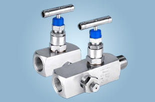 Needle Valves Supplier & Exporter in India