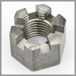 Stainless Steel Slotted Hex Nuts