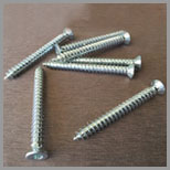SS Concrete Screw